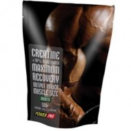 Creatine Maximum Recovery 500 г